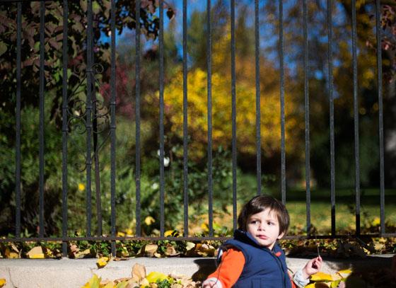 Kid Photographer   Denver